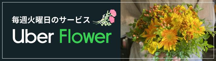 uber_flower_sp